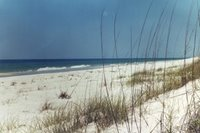 Santa Rosa Island, FL (D. Cox)