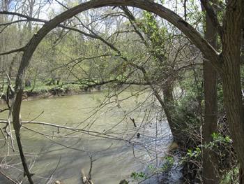 View across Antietam from Christ's Brigade