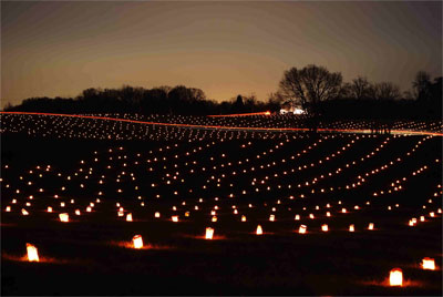 Illumination - Mumma Farm